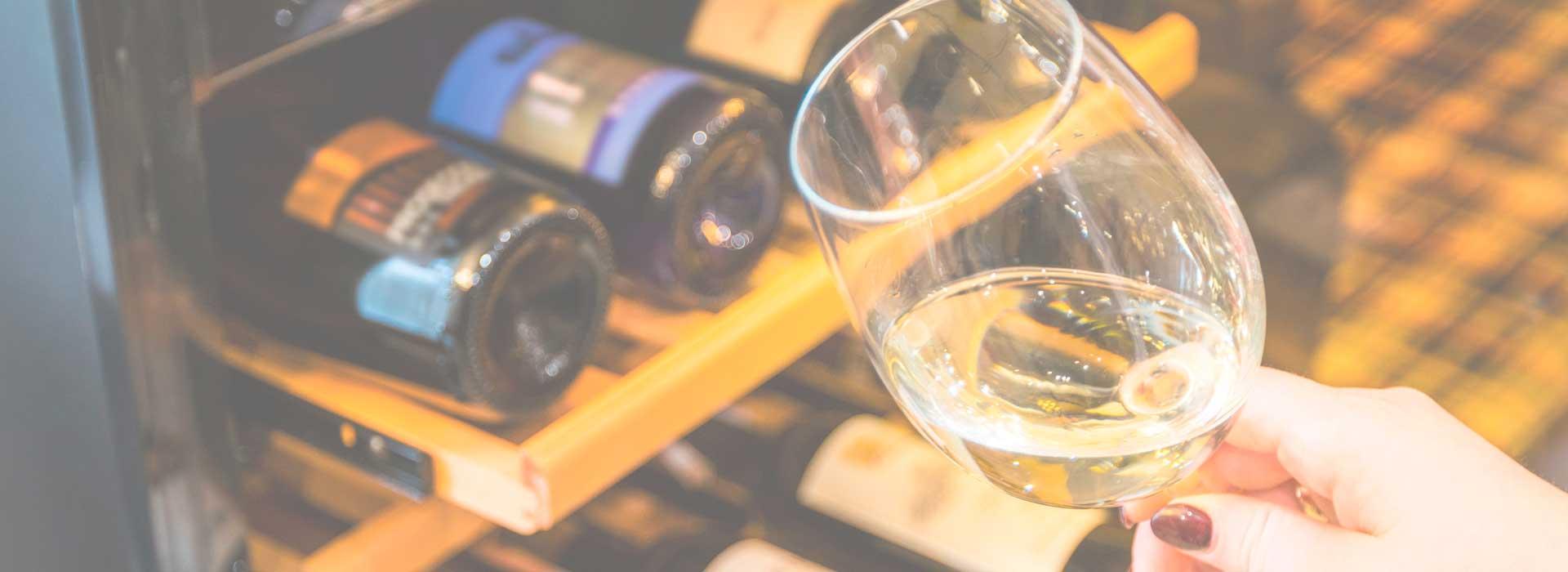 Weinklimaschränke